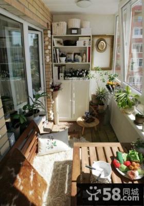 室内阳台盆栽蔬菜图片