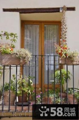 家庭小阳台花架图片