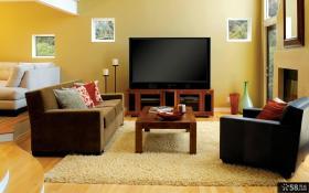 简约美式客厅电视背景墙效果图片